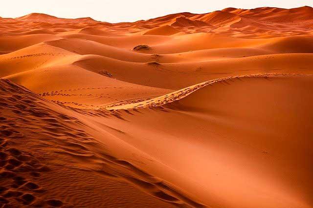 Lee más sobre el artículo Soñar con un desierto