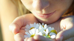 Lee más sobre el artículo Olores en los sueños