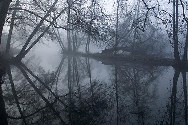 Soñar con neblina