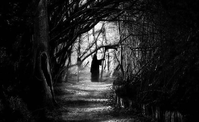 La sombra en nuestros sueños