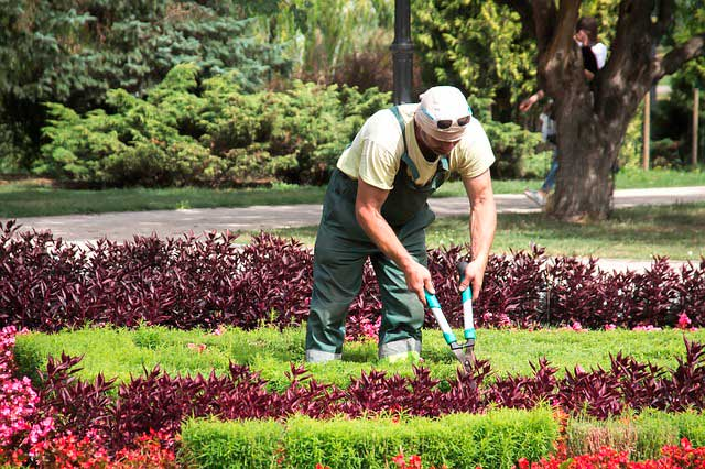 Soñar con un jardinero