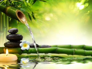 Lee más sobre el artículo Como alejar energías negativas de nuestro hogar con el feng shui