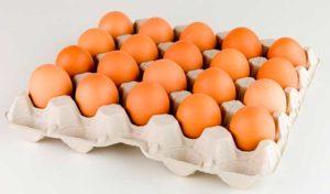 Soñar con huevos ¿Que significa?