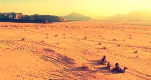 Soñar con camellos o dromedarios