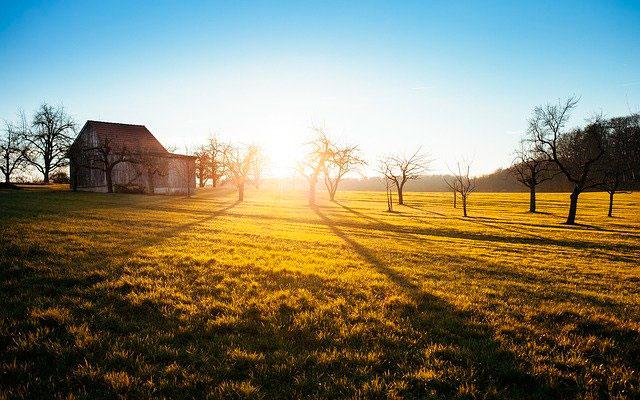 Soñar con una granja